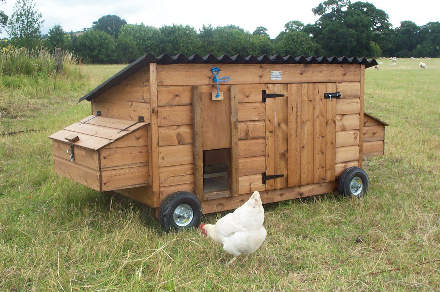 Preseli Chicken Coop With Wheeled Base Pads4pets