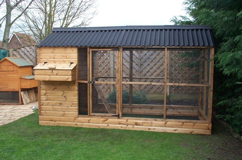 Powys Chicken Coop With Covered Run Pads4pets